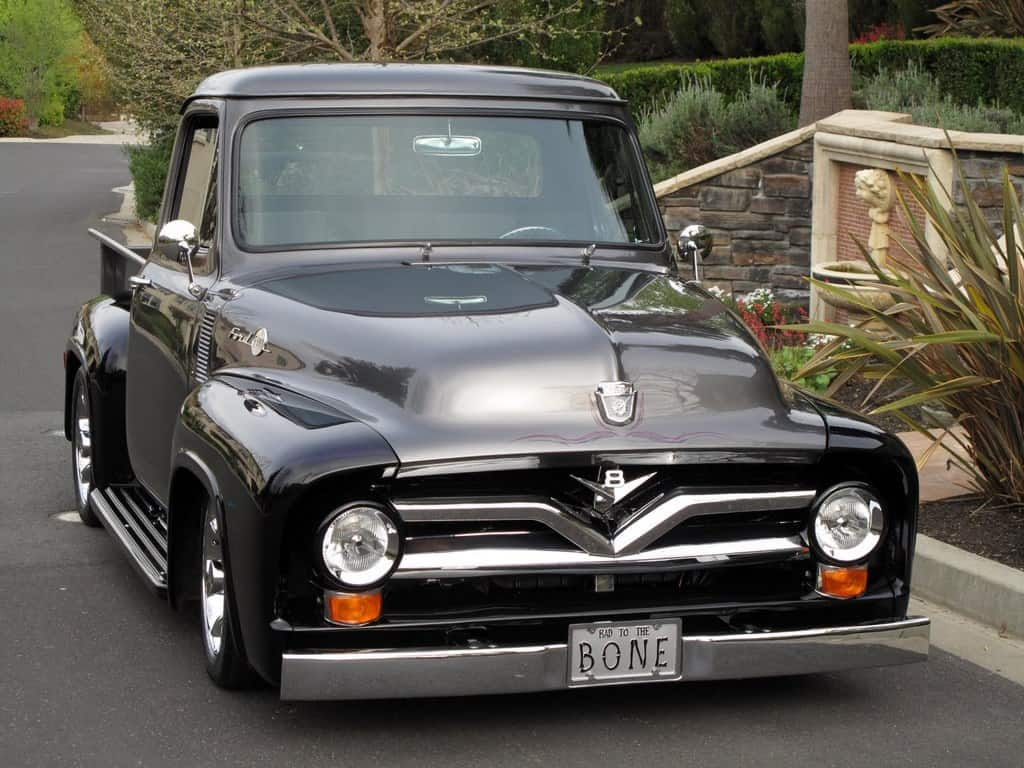 1955 Ford Truck For Sale Front
